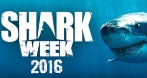 636018624626245357-2035966635_shark week