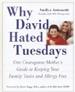Why David Hated Tuesdays - Amilya Antonetti