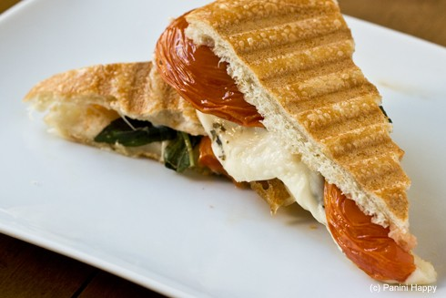 Roasted_Tomato_Mozzarella_Basil_Panini-cut-490